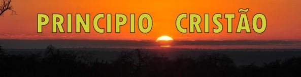 cropped-pc2topo3